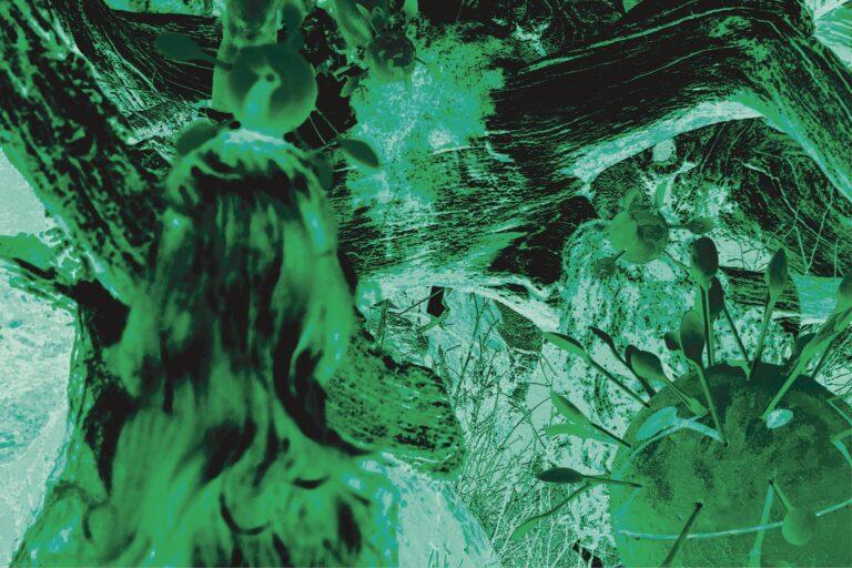60x40cm_green_negative_web